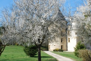 Stunning Chateau currently for sale Haute Garonne